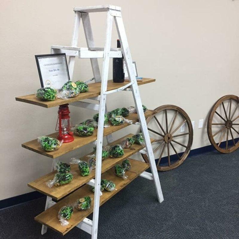Ladderdisplay2